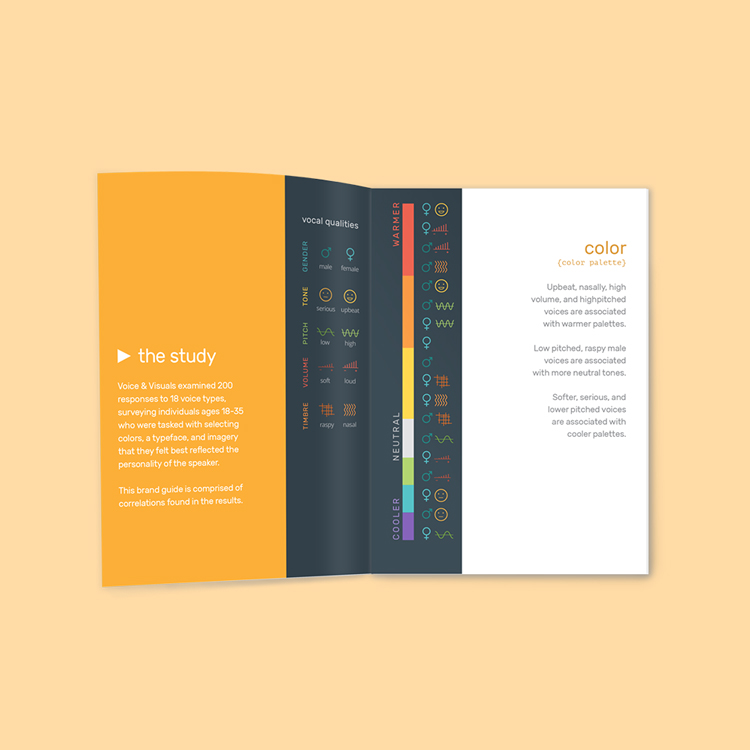 Voice & Visuals: Brand Guide Booklet Design